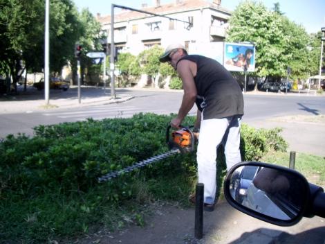 Así se encargan de la naturaleza en Podgorica, la capital del país